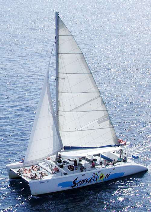 catamaran-s1
